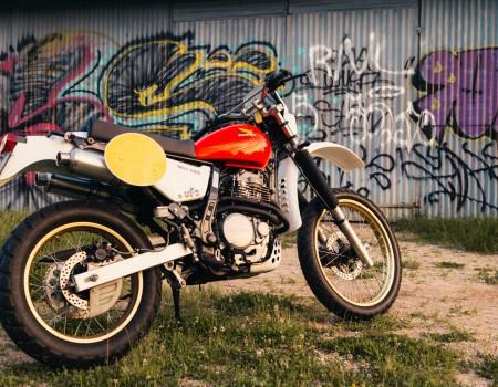 Honda Dominator 650 – Domix